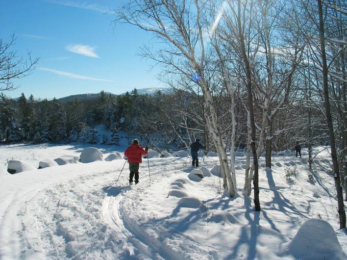 Quel ski de fond choisir ?