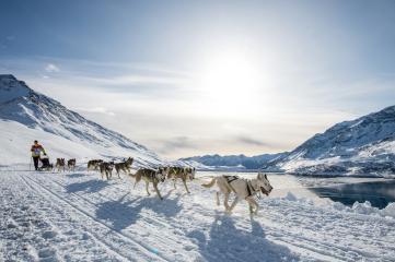 La Grande Odyssée Savoie Mont Blanc 2021