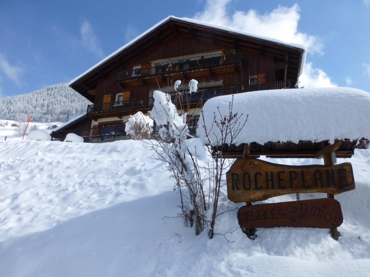 Ski en famille Chalet Roche Plane