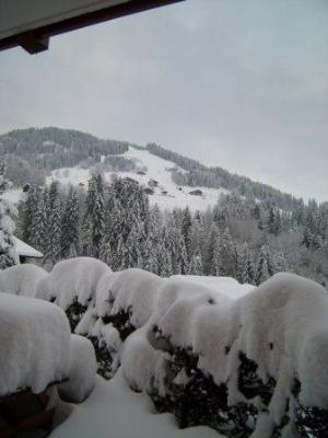 Ski en famille Les Chalets De La Cascade