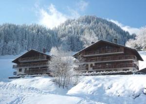 Location au ski Appartement 3 pièces 6 personnes (8) - Residence Alpina - Arêches - Extérieur hiver
