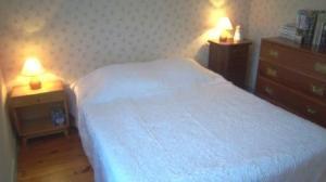 Location au ski Appartement 4 pièces mezzanine 8 personnes (64) - Chalet Areches - Arêches - Lit double