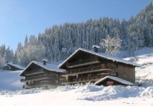 Location au ski Appartement 2 pièces coin montagne 4 personnes (3) - Residence Alpina - Arêches - Extérieur hiver