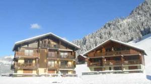 Location au ski Appartement 2 pièces 4 personnes (210) - Residence L'oree De La Combe - Arêches - Extérieur hiver