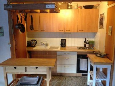 Location au ski Appartement 2 pièces 4 personnes (507) - Residence Royal - Brides Les Bains - Kitchenette