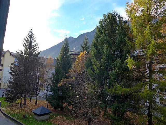 Аренда на лыжном курорте Апартаменты 2 комнат 4 чел. (10) - Jonquilles - Chamonix - апартаменты