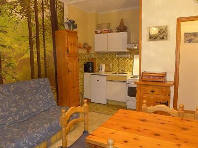 Rent in ski resort 2 room apartment 4 people (1) - Le Savoisien - Chamonix - Apartment
