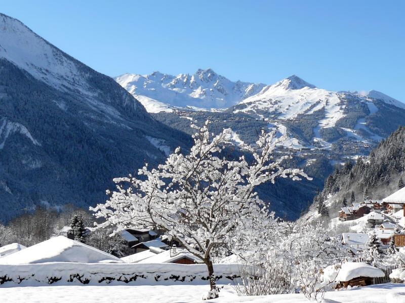 Location au ski Chalet Vieux Moulin - Champagny-en-Vanoise - Extérieur hiver