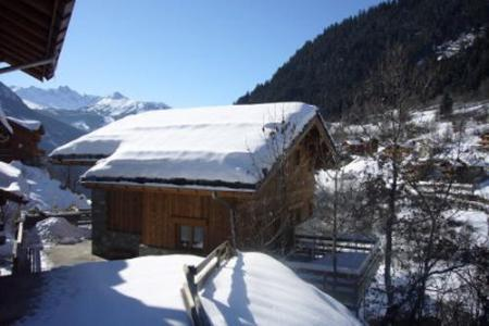 Rent in ski resort 5 room duplex chalet 8-10 people - Chalet la Sauvire - Champagny-en-Vanoise - Winter outside