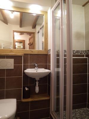Location au ski Studio 3 personnes (Confort) - Residence Les Edelweiss - Champagny-en-Vanoise - Douche