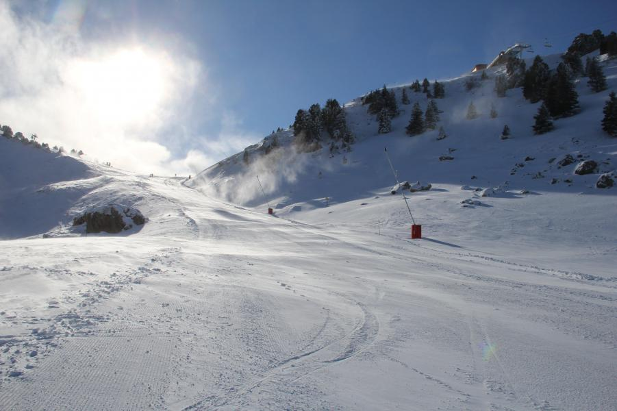 Location au ski La Résidence la Grive - Chamrousse - Extérieur hiver