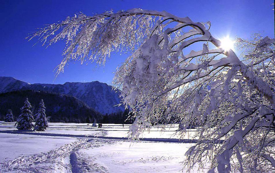 Vacances en montagne Studio 4 personnes (507) - Résidence l'Arselle - Chamrousse - Extérieur hiver