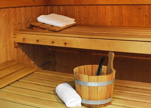 Location au ski Residence Le Grand Lodge - Chatel - Sauna