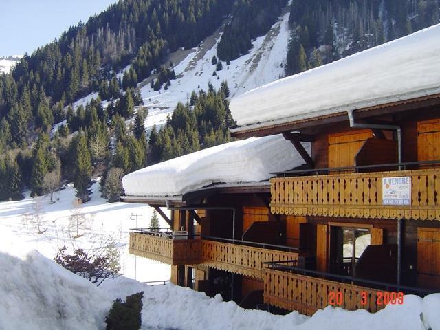 Location au ski Studio cabine 4 personnes (6) - Residence Les Fioles - Chatel - Extérieur hiver