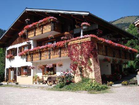 Ski rental holidays chatel chalet bel horizon for Chalet m bel pinie
