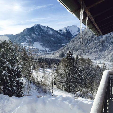 Vacaciones en montaña Estudio -espacio montaña- para 4 personas - Chalet le Tétras Lyre - Châtel - Invierno