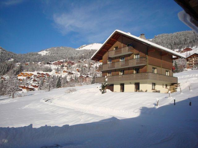 Vacaciones en montaña Apartamento cabina para 3 personas - Chalet le Val d'Or - Châtel - Invierno
