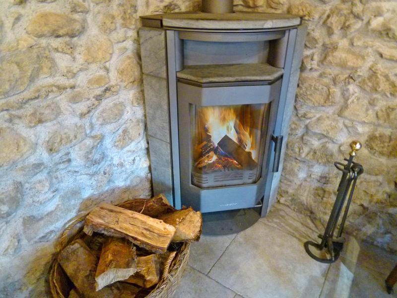 Аренда на лыжном курорте Chalet Petit Châtel - Châtel - Дровяная печь