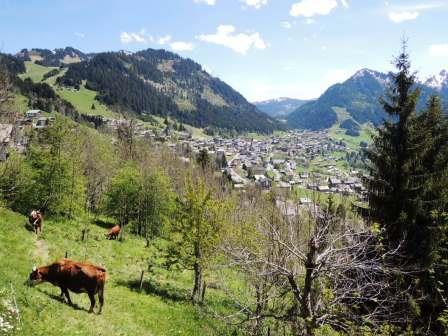 Location au ski Appartement 2 pièces coin montagne 4 personnes (BBB4) - Les Chalets de Barbessine - Châtel