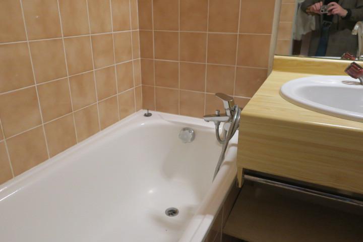 Location au ski Appartement 2 pièces coin montagne 4 personnes (BBB4) - Les Chalets de Barbessine - Châtel - Salle de bains