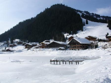 Vacaciones en montaña Apartamento cabina 2 piezas para 6 personas (099) - Résidence Alpenlake - Châtel - Invierno