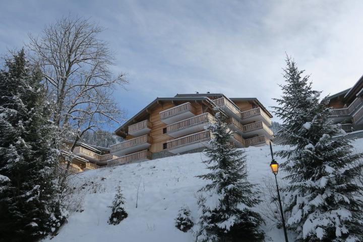 Rent in ski resort Résidence les 4 Eléments - Châtel - Winter outside