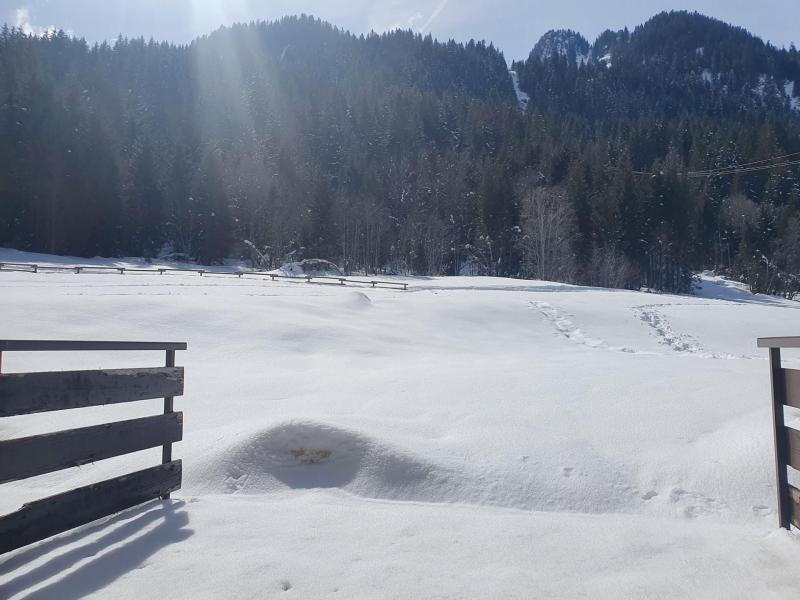 Location au ski Appartement 2 pièces 5 personnes (IRI006) - Résidence les Iris - Châtel