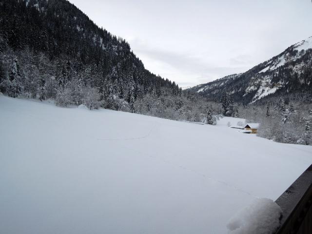 Location au ski Appartement 3 pièces 5 personnes (18) - Résidence les Myrtilles - Châtel