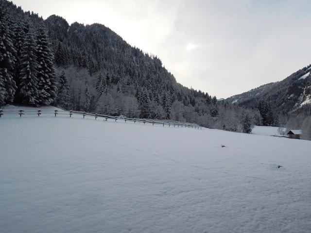 Location au ski Appartement 2 pièces cabine 6 personnes (9) - Résidence les Myrtilles - Châtel - Coin repas