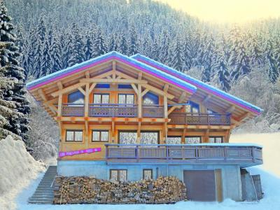 Rent in ski resort Chalet Châtel CPN01 - Châtel - Winter outside