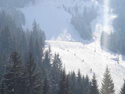 Location au ski Appartement 2 pièces coin montagne 5 personnes (12C) - Chalet du Perthuis - Châtel - Extérieur hiver