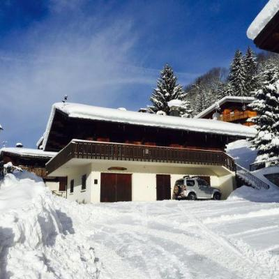 Rent in ski resort Studio sleeping corner 4 people - Chalet le Tétras Lyre - Châtel - Winter outside