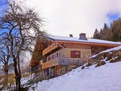 Аренда на лыжном курорте Chalet Petit Châtel - Châtel - зимой под открытым небом