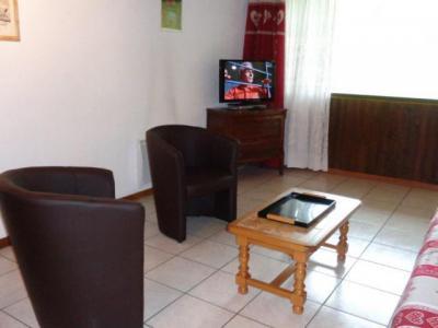 Location au ski Appartement 2 pièces 5 personnes (RHO307) - Résidence les Rhododendrons - Châtel - Appartement