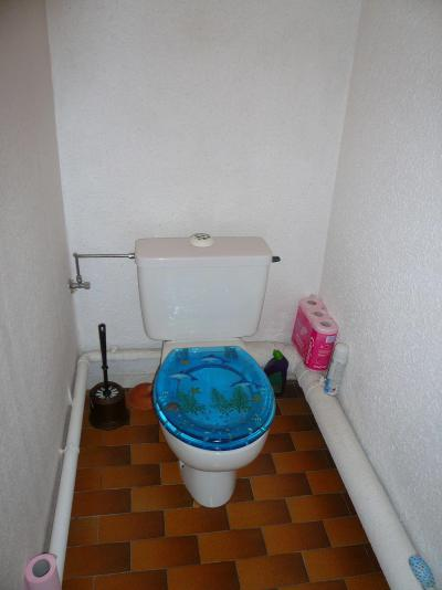 Аренда на лыжном курорте Апартаменты 2 комнат с мезонином 6 чел. (754) - Résidence l'Ecrin des Glaciers - Isard - Combloux - Туалет