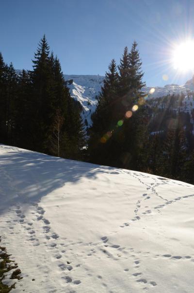 Location au ski Studio cabine 4 personnes (109) - La Résidence Sagittaire - Flaine