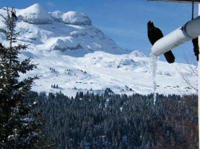 Location au ski Résidence Bélier - Flaine