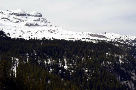 Location au ski Studio 4 personnes (63) - Residence Vega - Flaine