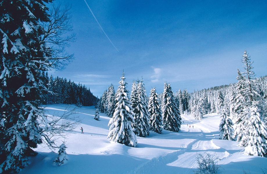 Vacances en montagne Résidence les Myrtilles - Gérardmer - Extérieur hiver
