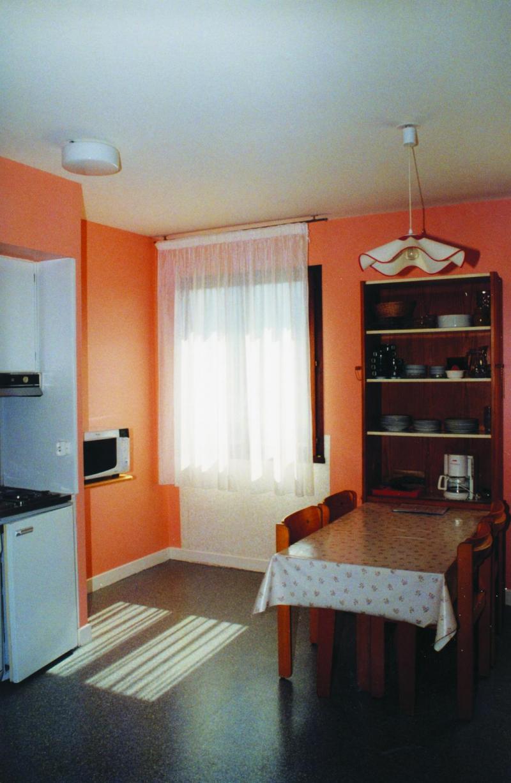 Rent in ski resort Résidence les Myrtilles - Gérardmer - Open-plan kitchen