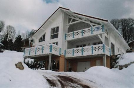 Location au ski Appartement 2 pièces 4 personnes - Chalets Domaine les Adrets - Gérardmer - Extérieur hiver