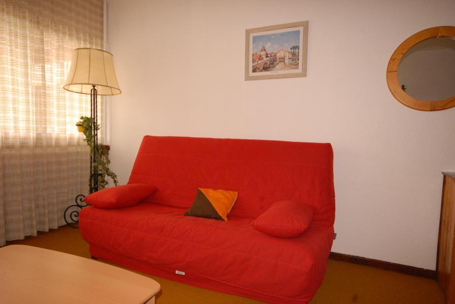 Rent in ski resort Studio 4 people (SAN105) - Résidence Sanctus - Gourette - Bed-settee