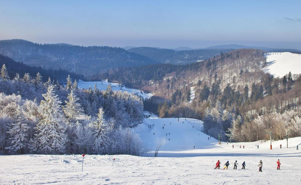 Holiday in mountain resort Hôtel les Vallées - La Bresse - Winter outside