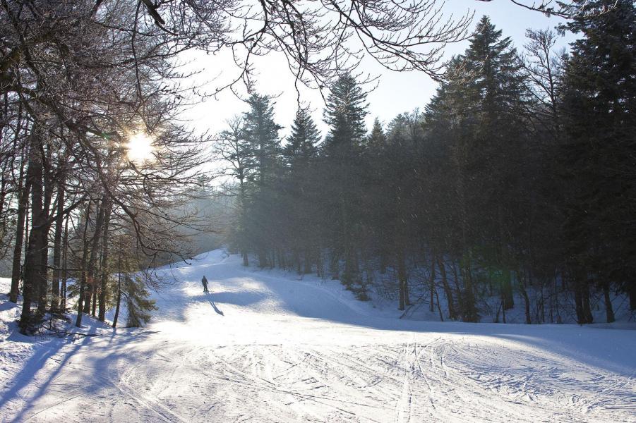 Rent in ski resort Hôtel les Vallées - La Bresse - Winter outside
