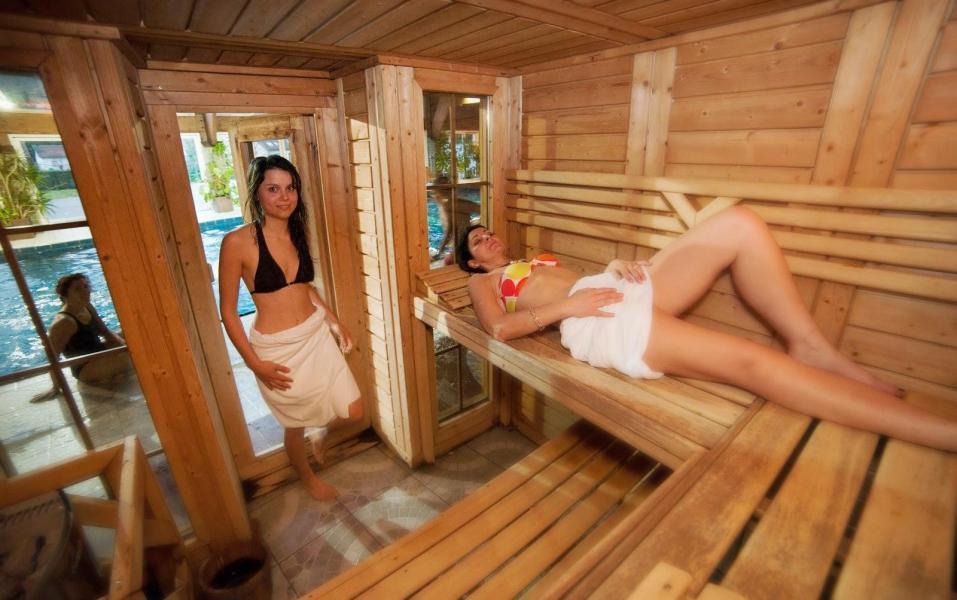 Rent in ski resort Hôtel les Vallées - La Bresse - Sauna