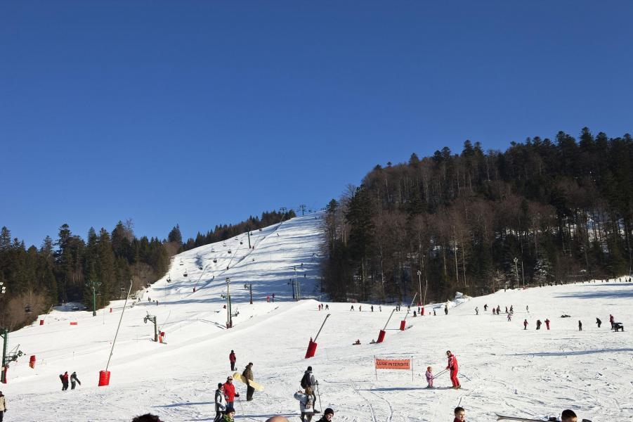 Location au ski Résidence les Grandes Feignes - La Bresse - Extérieur hiver