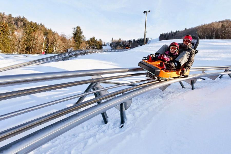Location au ski Résidence les Vallées - La Bresse - Autres