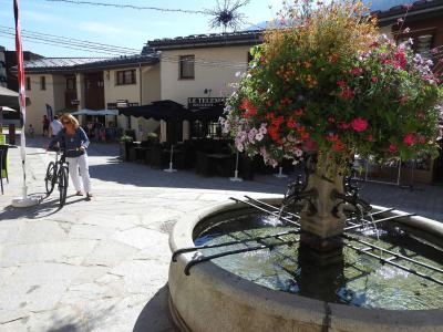 Rent in ski resort Résidence le Village - La Norma