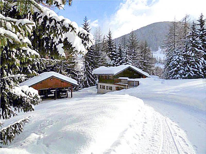 Vakantie in de bergen Chalet Peudral - La Plagne - Buiten winter