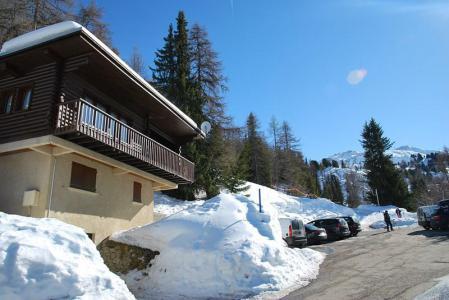 Location au ski Chalet 4 pièces 7 personnes (8) - Les Chalets de la Forêt - La Plagne - Extérieur hiver